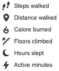 Fitbit Icons and Meanings